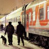 РЖД планиурет потратить на реконструкцию Малого кольца 16 млрд. руб.